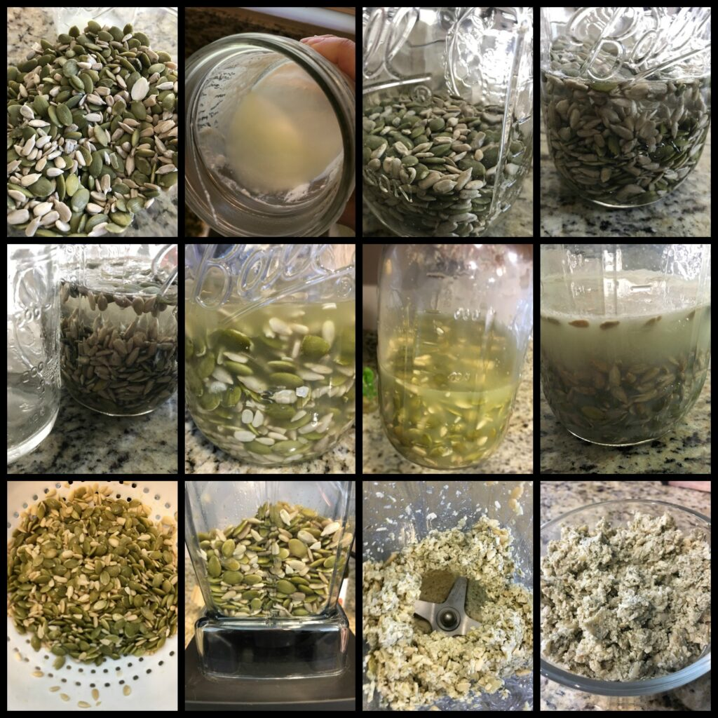 Fermented raw seeds for dogs