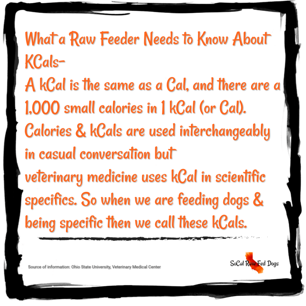 caloric feeding for dogs